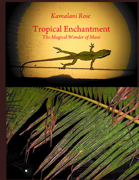 Tropical Enchantment
