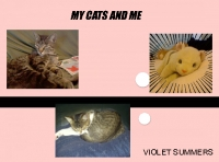 My Cats and Me