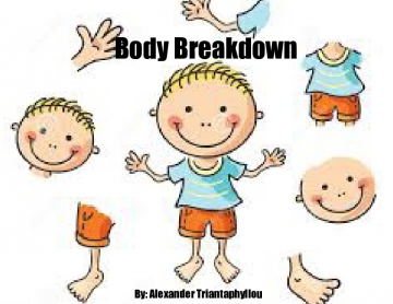 Body Breakdown