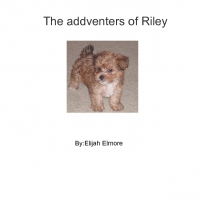 The addventers of Riley