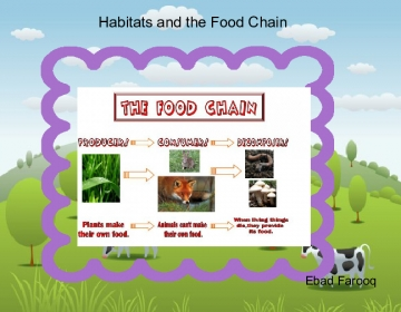 HABITATS AND THE FOOD CHAIN