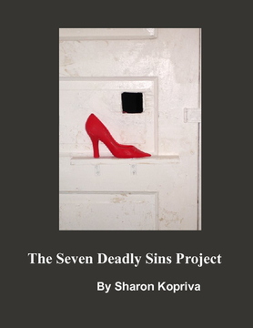 7 DEADLY SINS PROJECT