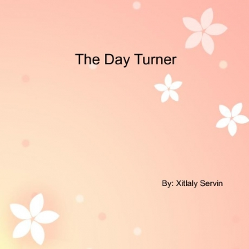 The Day Turner