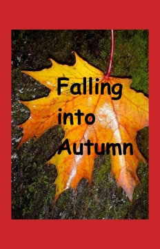 Falling into Autumn