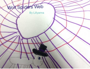 Wolf spiders web