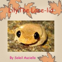 Lily the Lace-lid