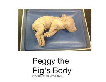 Peggy the pig's body