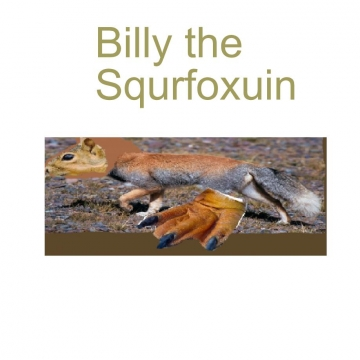 Billy the Squrfoxuin