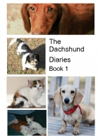 The Dachshund Diaries