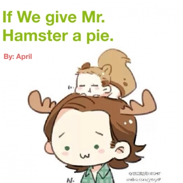 If we give Mr. hamster a pie