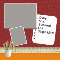 Diary of a Stressed Out Single Mom!