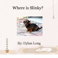 Where is Slinky