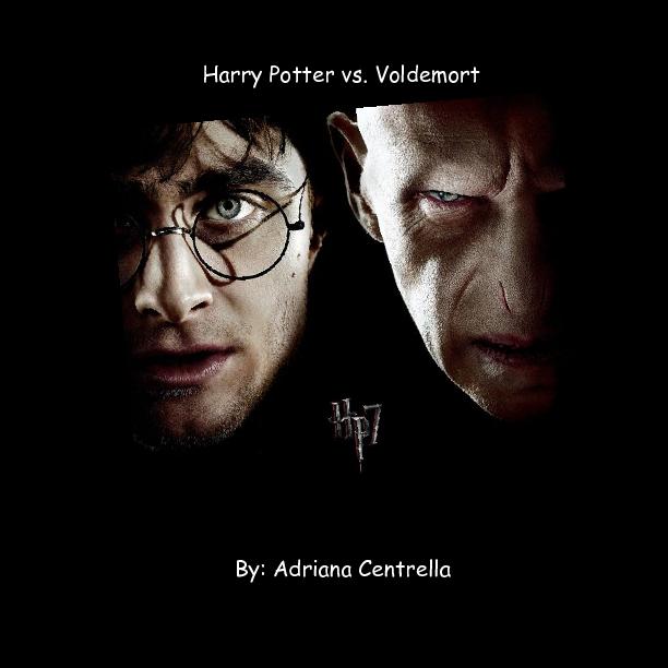harry potter vs  lord voldemort