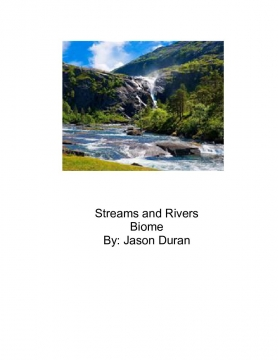 Streams and Rivers Biome