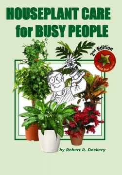 HOUSE PLANT CARE FOR BUSY PEOPLE