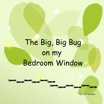 The Big, Big Bug on my Bedroom Window