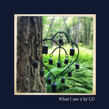 What I see 2 by LD