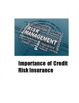 Importance of Credit Risk Insurance