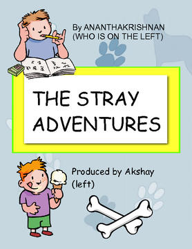 The Stray Adventures