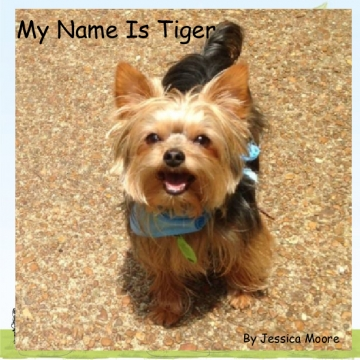 My Name Is Tiger