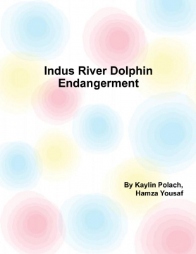 Indus River Dolphin Extinction