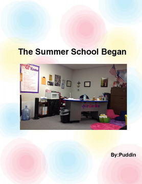 The Summer School Began