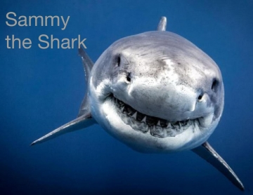 Sammy the Shark
