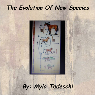 The Evolution Of New Species