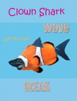 All about Clown Sharks