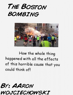 The Boston bombing