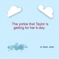 the yorkie taylor is getting for her b-day