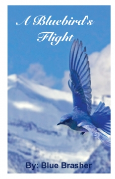A Bluebird's Flight