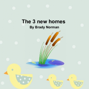 The 3 new homes