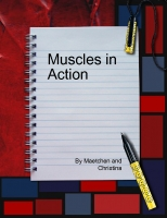 Muscles in Action