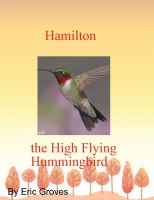 Hamilton the High Flying Hummingbird