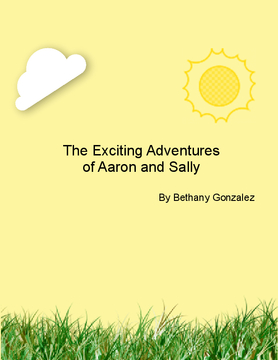 The Exciting Advetures of Aaron and Sally