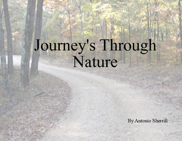 Journey's Through Nature