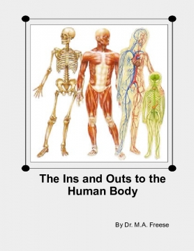 The Ins and Outs to the Human Body