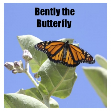 Bently the Butterfly