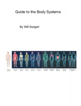 Guide to the Body Systems