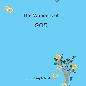 The Wonders of God in my little life