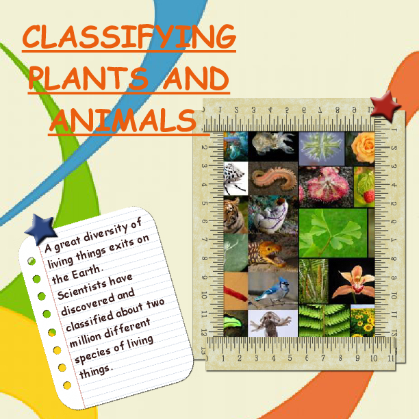 Classifying Plants and Animals - Made by: Eruj Sohail | Book