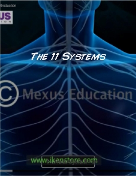 The 11 Systems