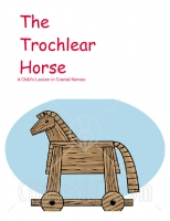 The Trochlear Horse- Cranial Nerves