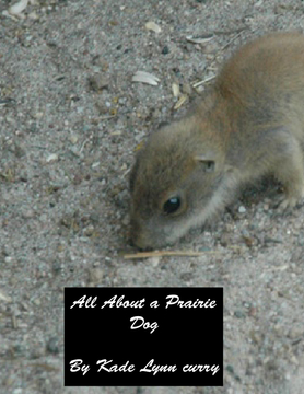 The prairie dog