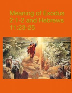 Exodus 2:1-2 and Hebrew 11: 22-25