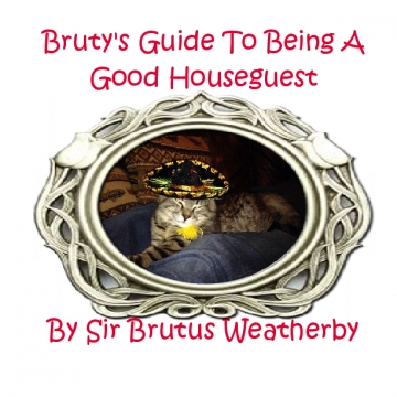 Bruty's Guide to Being a Good Houseguest