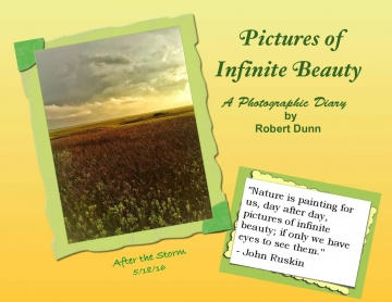 Pictures of Infinite Beauty