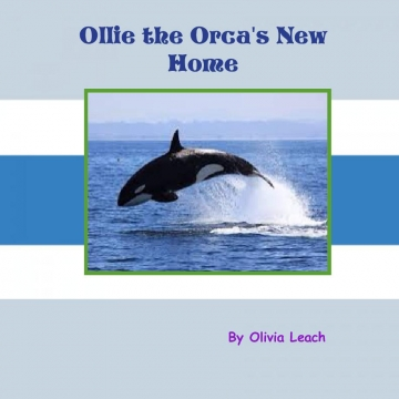 Ollie the Orca's New Home