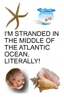 I'M STRANDED IN THE MIDDLE OF THE ATLANTIC OCEAN, LITERALLY!